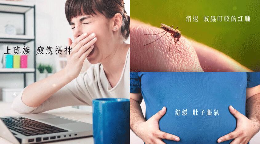 蚊子叮擦藥嗎?改用青草膏 好用又天然,萬用青草膏是蚊蟲叮咬止癢膏,可對付蚊蟲叮咬紅腫的萬用青草膏